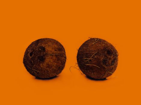 two coconut with orange background