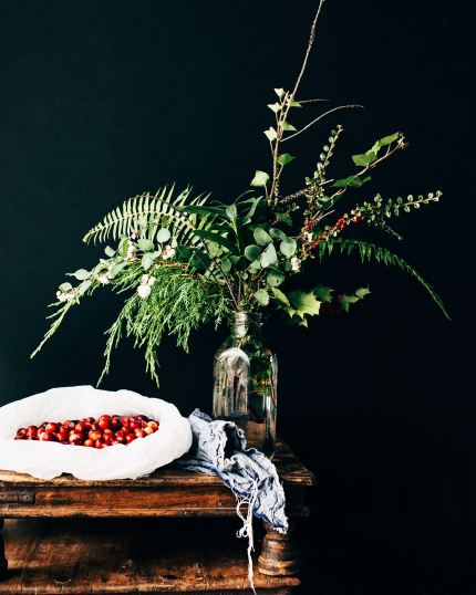 cranberries in a bag on a table with plant