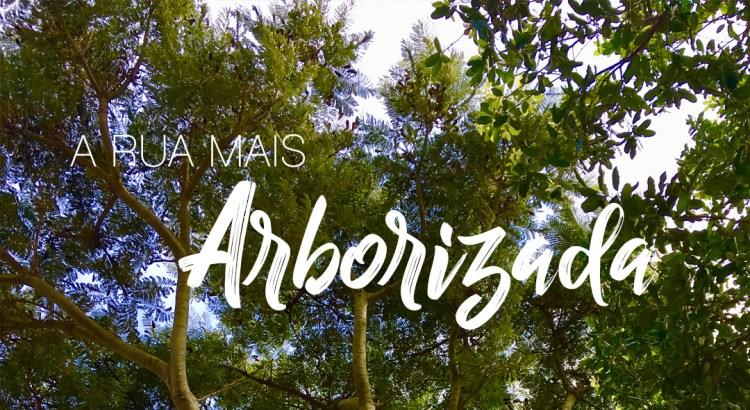 A rua mais bonita e arborizada do mundo fica no Brasil