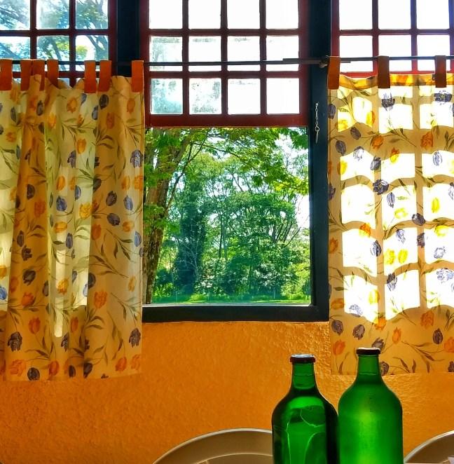 Imagem mostra uma janela com cortinas e duas garrafas sobre uma mesa, com uma paisagem de árvores