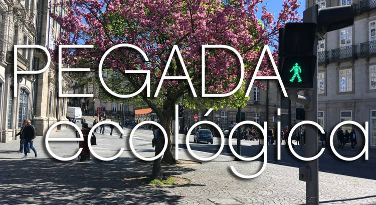 Foto mostra calçada de cidade com árvore florida ao fundo e semáforo