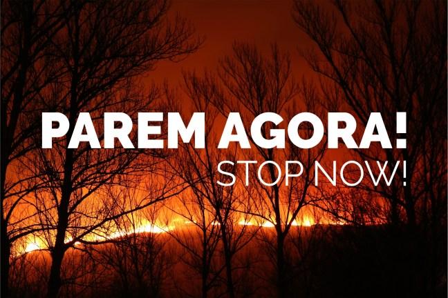 Foto mostra área de mata pegando foto com a frase 'Parem agora!' e 'Stop now!'