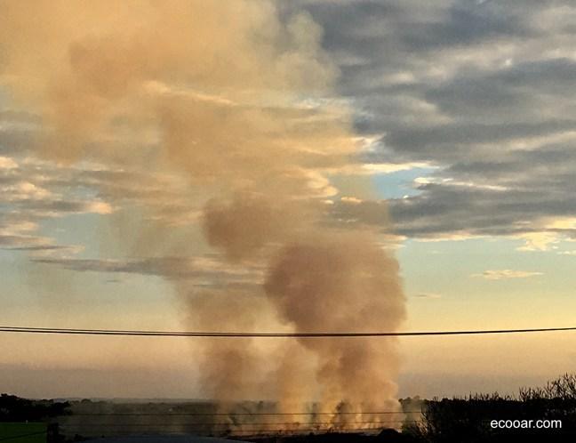 Foto mostra área de mata pegando fogo