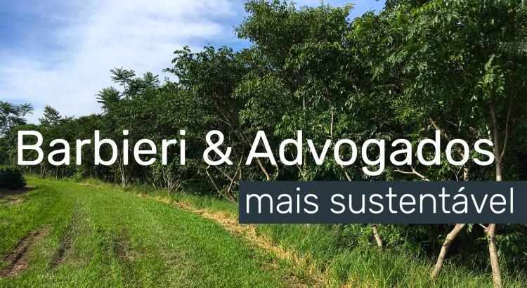Foto mostra árvores em área de preservação permanente