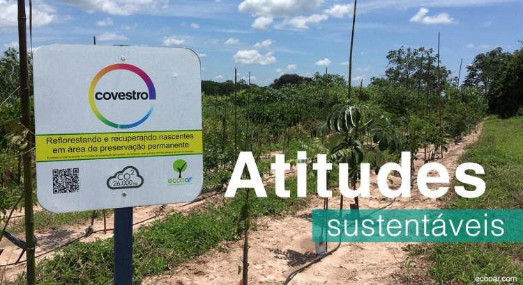 Foto mostra area de reflorestamento com a placa da Covestro