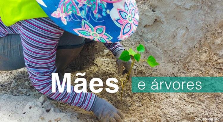 Foto mostra uma das mães do projeto plantando uma árvore