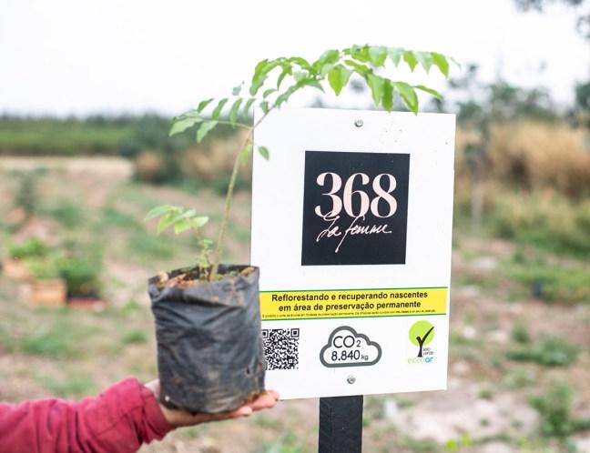 Foto mostra placa da 368 La Femme em área de reflorestamento