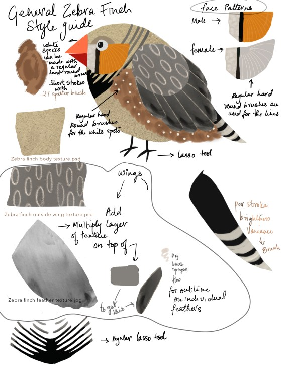 Style guide for the zebra finch character. Art by Tara Sunil Thomas.