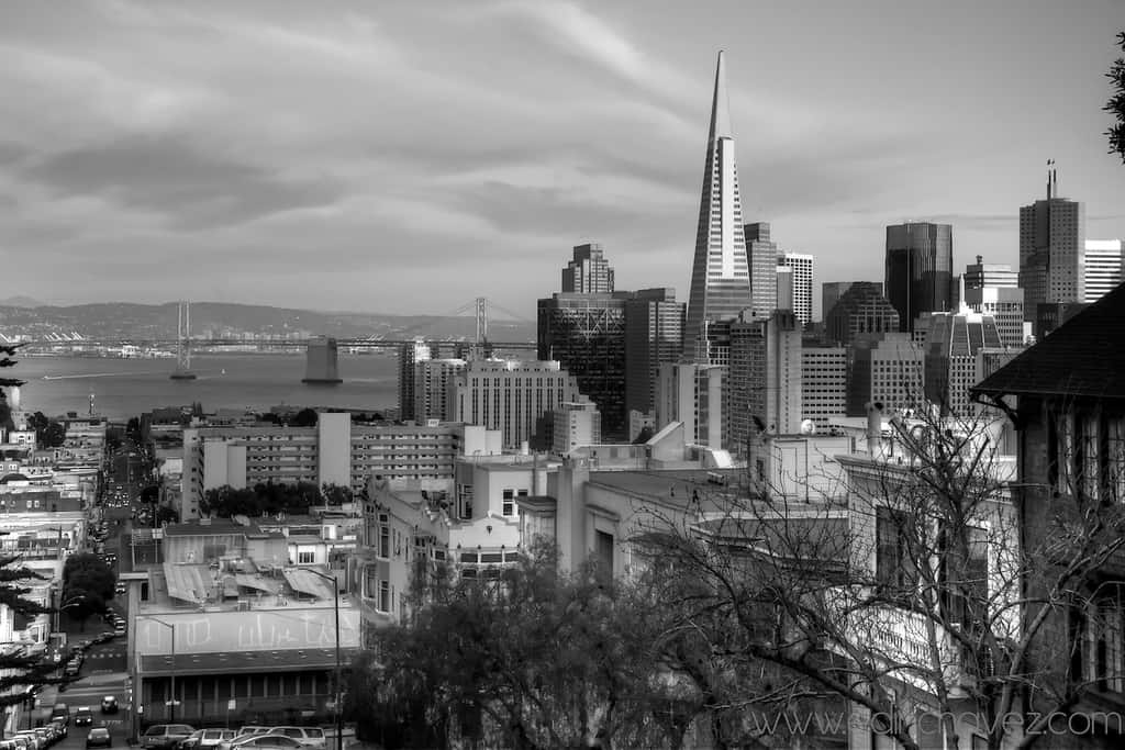 Shot of the Day-San Fran From the top  - image  on https://blog.edinchavez.com