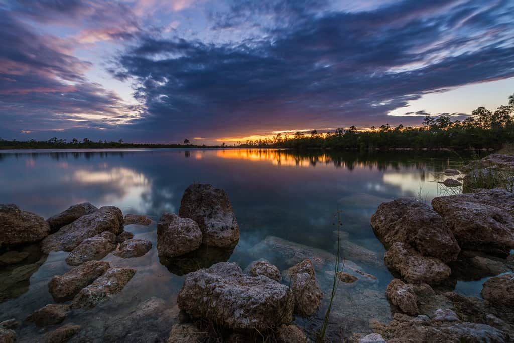 Landscape and Cityscapes Photography Presets - image Everglades-706-of-711 on http://blog.edinchavez.com