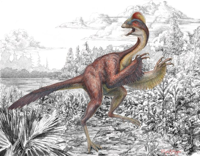 "Anzu wyliei, the ""chicken from Hell,"" explores its 66 million-year-old North American environment in this terrific illustration. Illustration by Mark A. Klingler, Carnegie Museum of Natural History"
