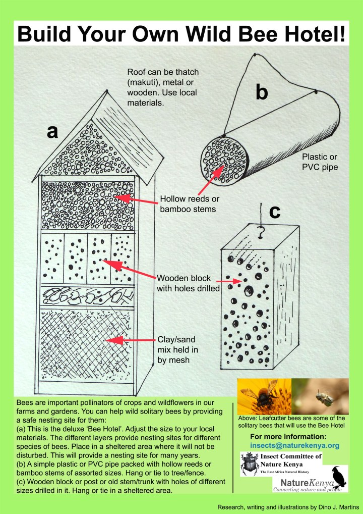 Click here to build your own bee hotel. Hardworking bees make great guests—pretty flowers and no loud parties!