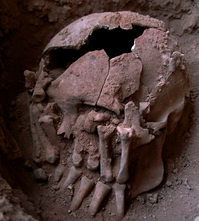 "Paleoanthropologists describe the Lapa do Santo burial: ""The palms of the hands were positioned over the face of the skull. The right hand was laid over the left side of the face with distal phalanges pointing down (i.e., to the chin), while the left hand was laid over the right side of the face with distal phalanges pointing up (i.e. to the forehead). . . . this individual was estimated to be a young adult male."" Photograph courtesy Danielo V. Bernardo, et. al., and PLoS One. (CC BY 4.0)"