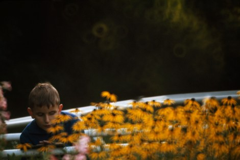 A young boy stops to smell the flowers in Vienna's Garden for the Blind. Photograph by William Albert Allard, National Geographic