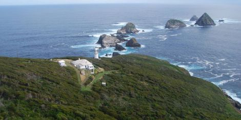 They would pay you to live here. Photograph courtesy Tasmania Parks and Wildlife Service