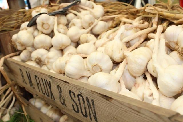 Garlic Festival 2