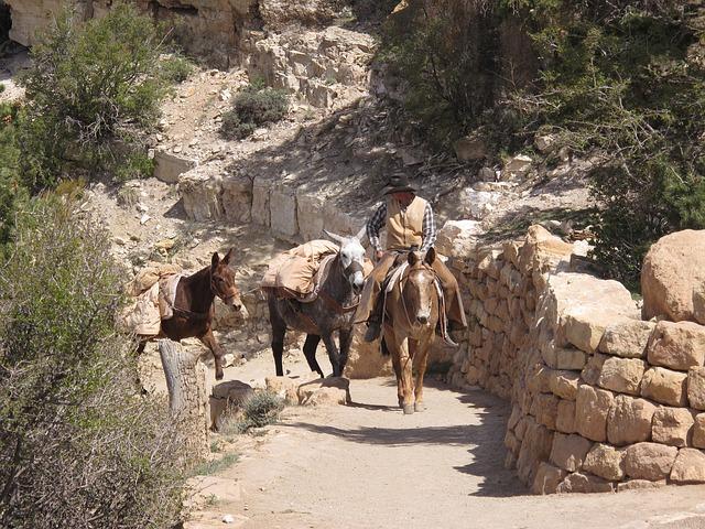 grand-canyon-646254_640