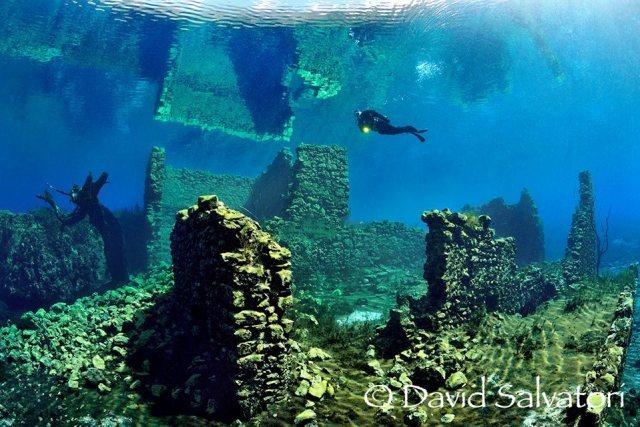 Photo credit: Scuba Diver Life