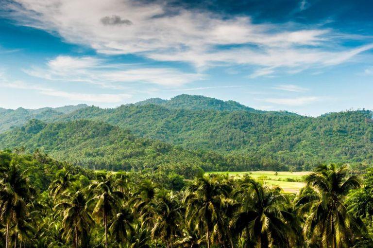 quezon nation park