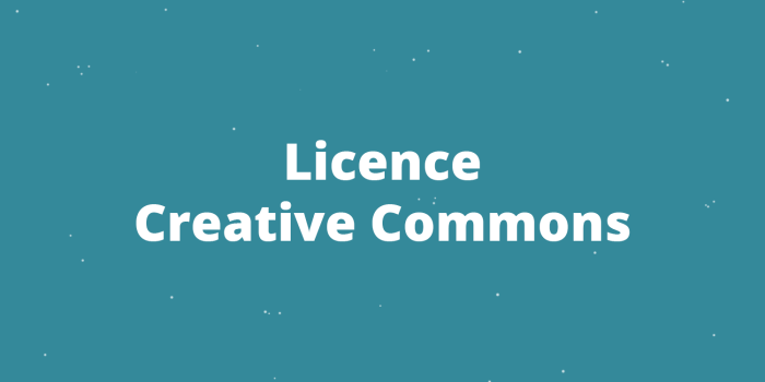 Licence Creative Commons