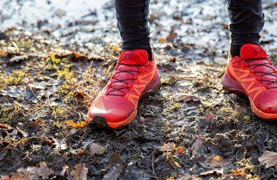 Salomon Chaussure trail Sense Ride