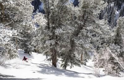 Skiez en Utah Eider