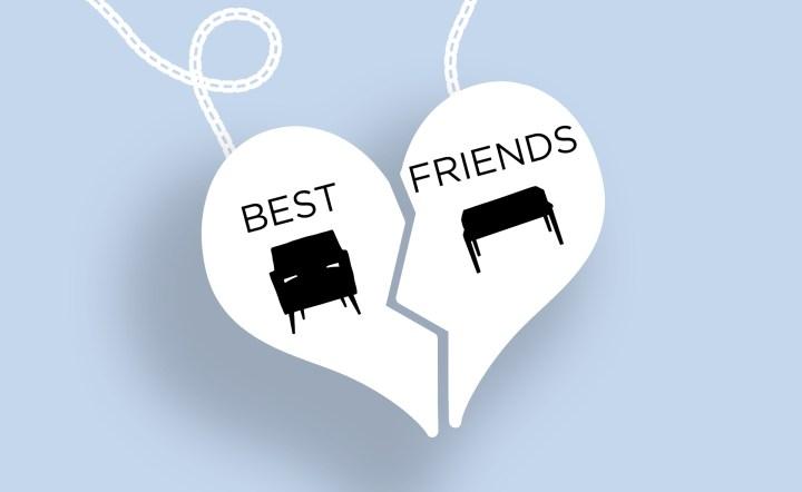 Celebrating National Best Friends Day