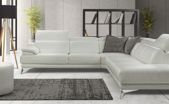 White leather sofa with gray rug, gray bookcase, green plants, and table lamp in lifestyle setting