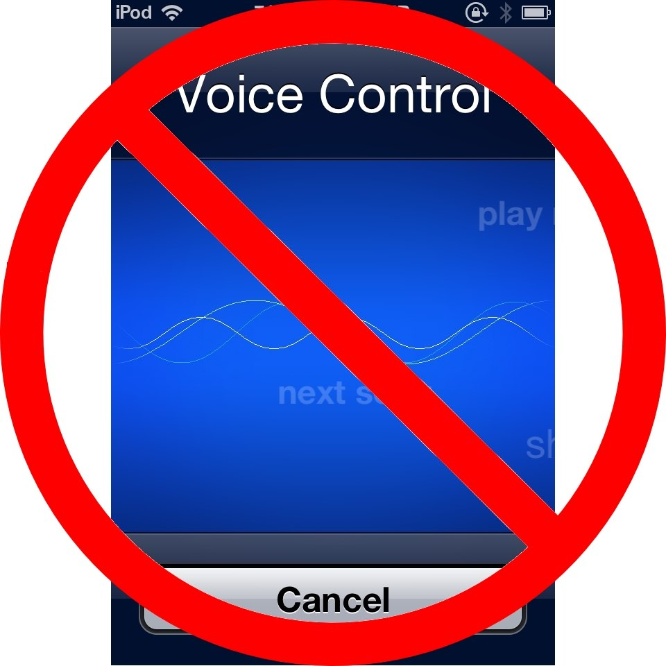 Disabling Voice Control On My iPod