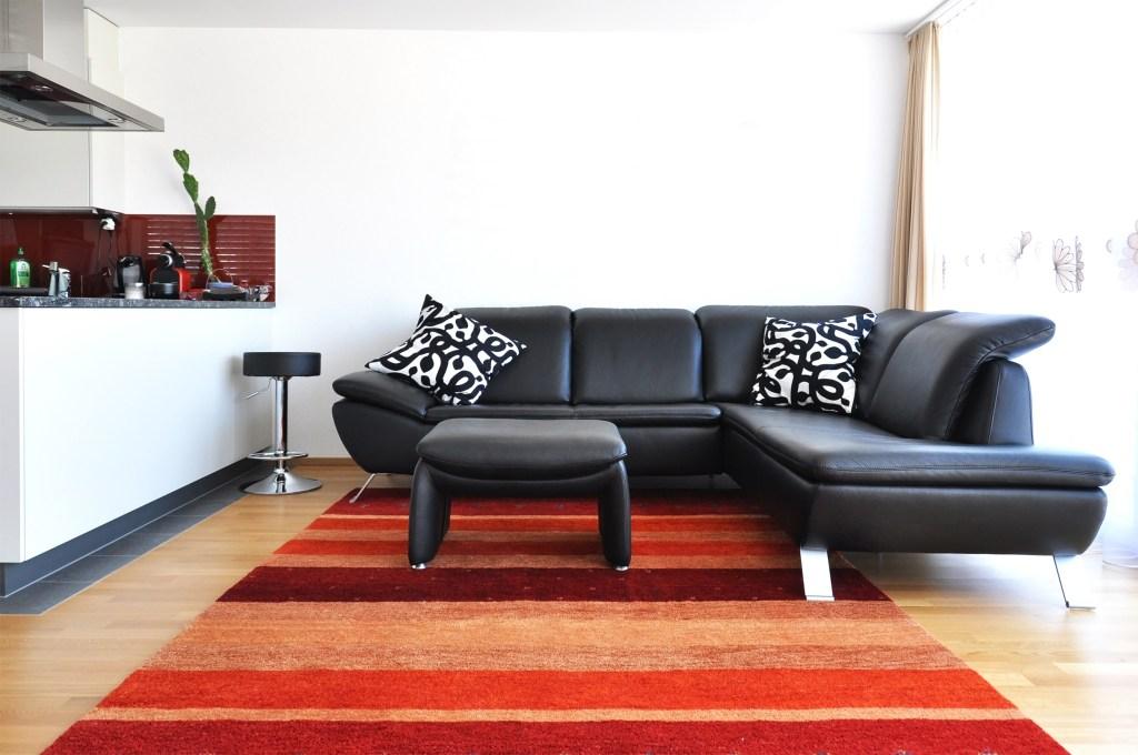 design contemporan pentru camera de zi