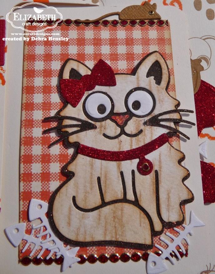 ECD Feb bp meow closeup 1a P1070609
