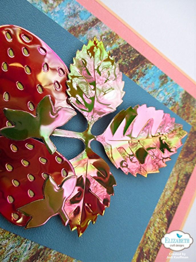 Judi'sBerries-5