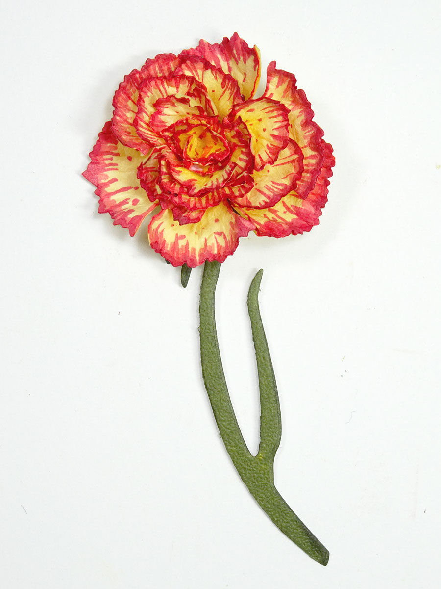 Carnation-Thank-You-Annette-Green-06