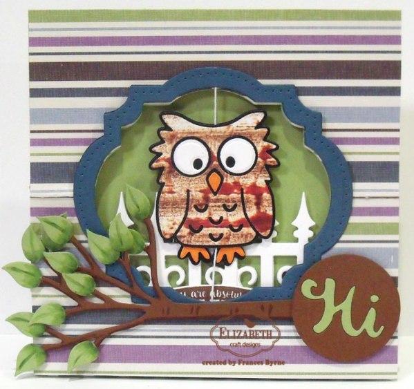 Owl Flying Easel Card by Frances Byrne