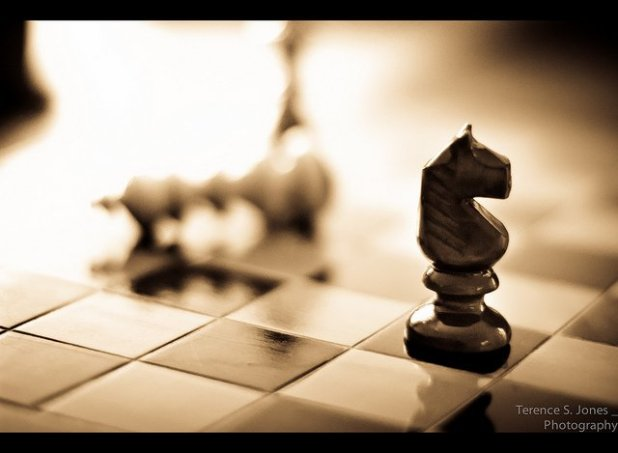 checkmate [235/365]