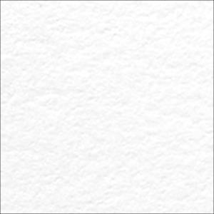Letterpress 110 lb. Cardstock, White, 10 pk -