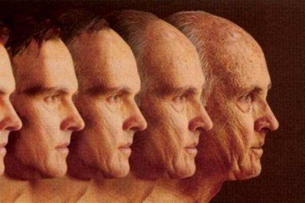 15. Investigación anti envejecimiento