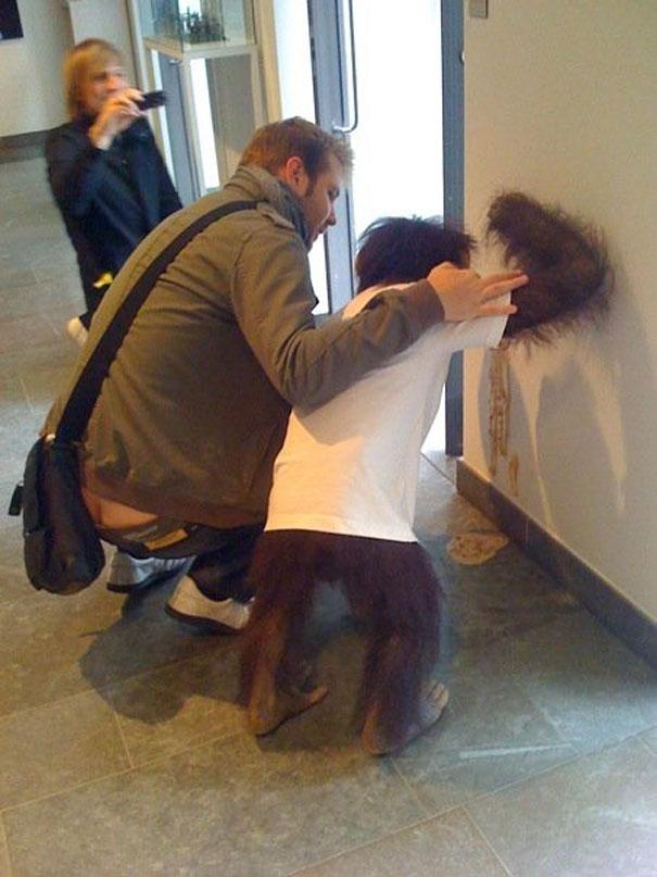 3. Típico, no podes salir con tu amigo el mono porque cae con resaca al laburo y te vomita toda la pared.
