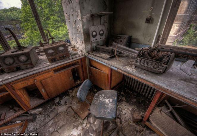 3. Hoy en día estas habitaciones son solo un refugio para algunos animales salvajes