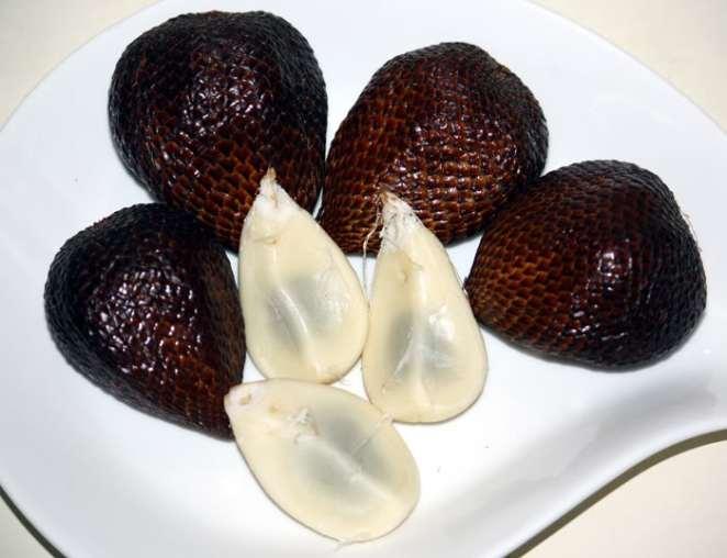 13. Salak o fruto de la serpiente.