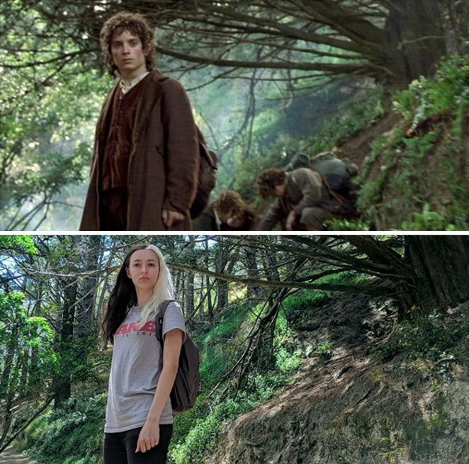 Leaving The Shire In Hobbit