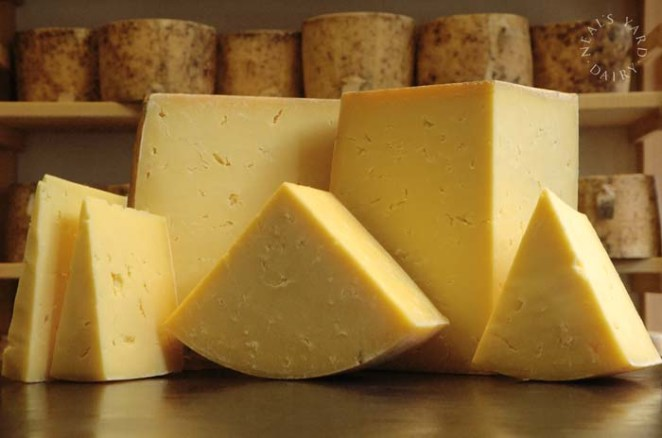 Resultado de imagen para cheese
