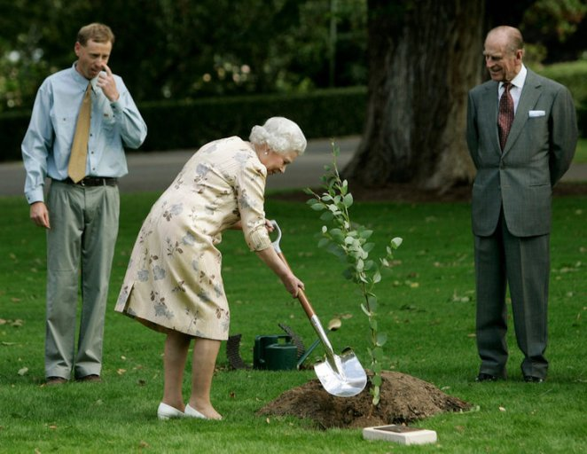 You do the gardening, too...