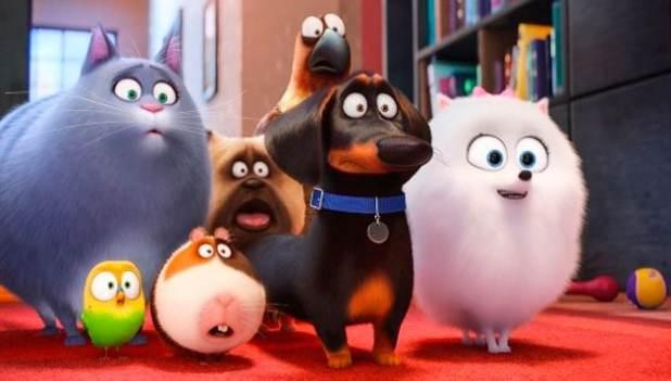 nova animação de cachorros