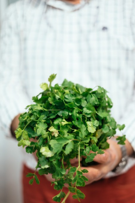 Coriander - Arte e Sal Restaurant, Sines, Alentejo - Emanuele Siracusa - Portugal Food and Travel Photographer