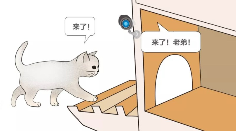 Baidu made a smart cat shelter that uses AI to tell cats and dogs apart