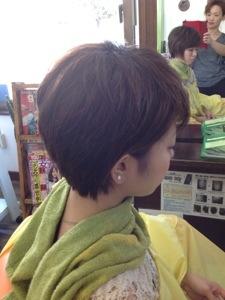 20121019-110210.jpg