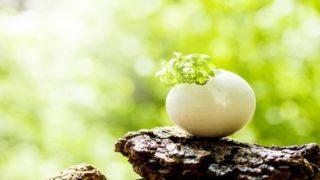 使命や天命に気づく前に、知っておきたい基礎の基礎。