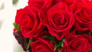 【2018年開講】薔薇の魔法師養成講座