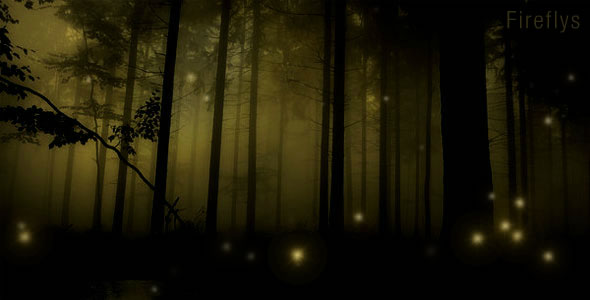 Fireflys